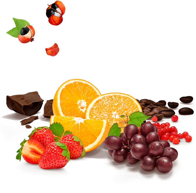 Imagem A World of Opportunities for Brazilian Producers