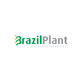 BrazilPlant