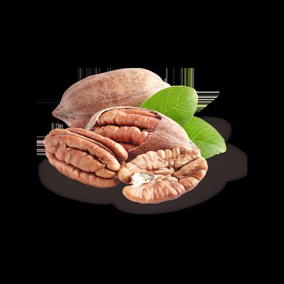 Magnuts